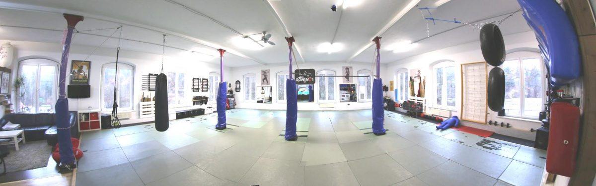 RoninZ Panorama